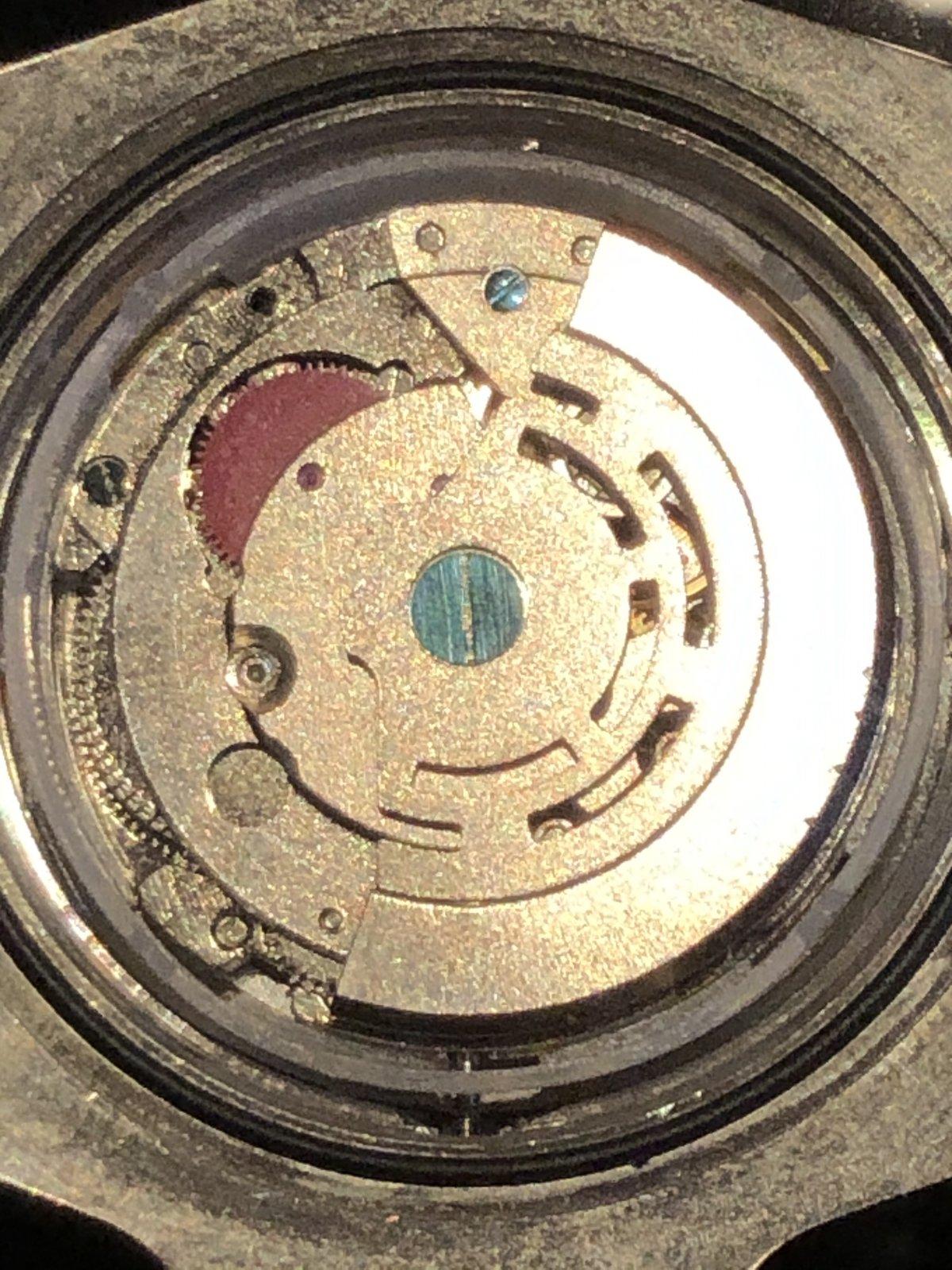 1B7CF5D0-238C-41CB-ADB0-30C388376C1A.jpeg