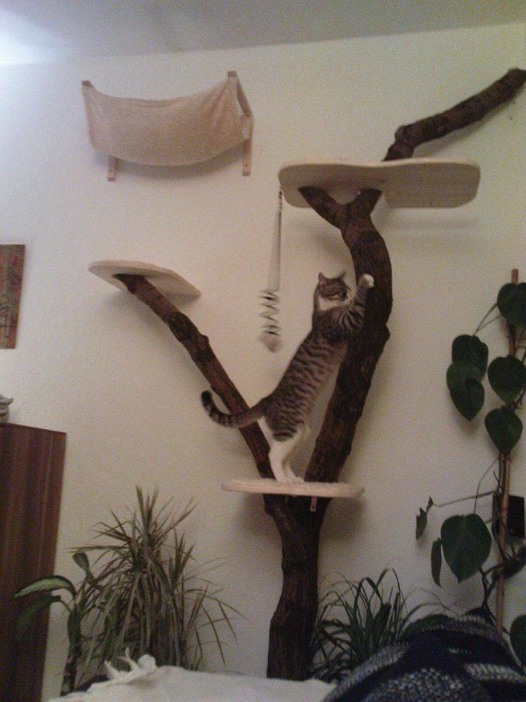 Kratzbaum selber bauen - kratzbaum selber bauen - einebinsenweisheit