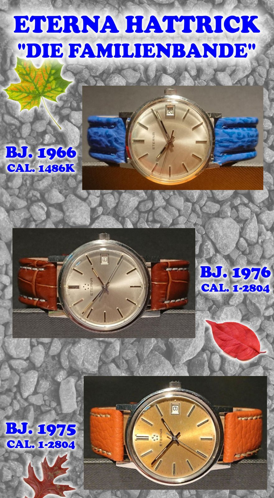 ETERNA 2804 CLASSIC.jpg