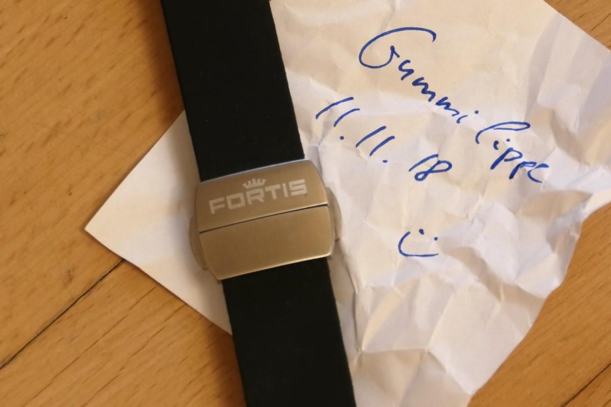 fortis01.jpg