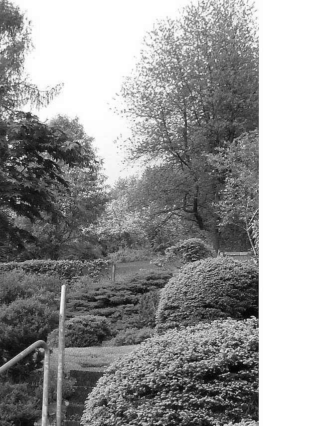 Makros u fotos aus dem garten uhrforum seite 35 for Gartengestaltung 70er jahre