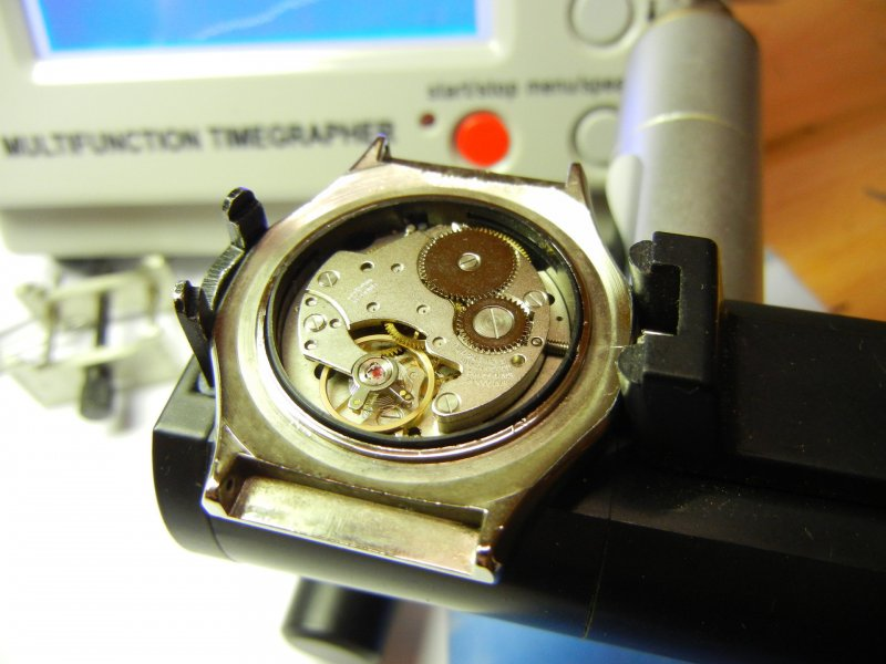 DSCN8359.jpg