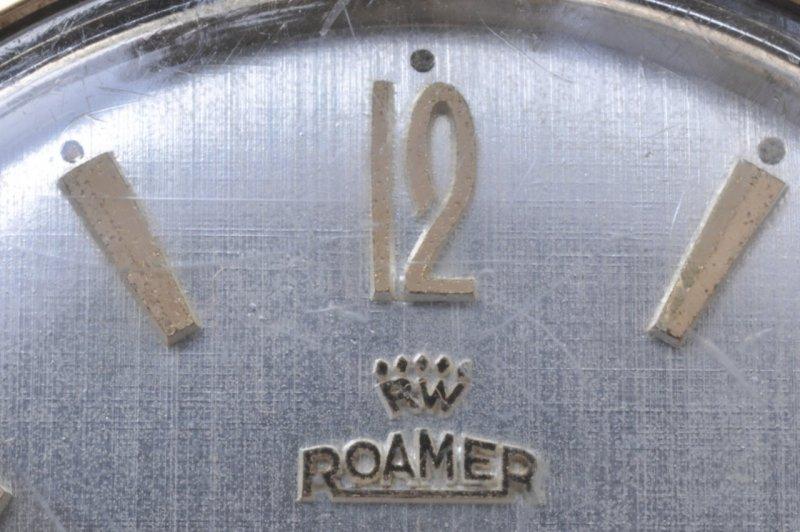 Roamer-schriftzug-alt.jpg