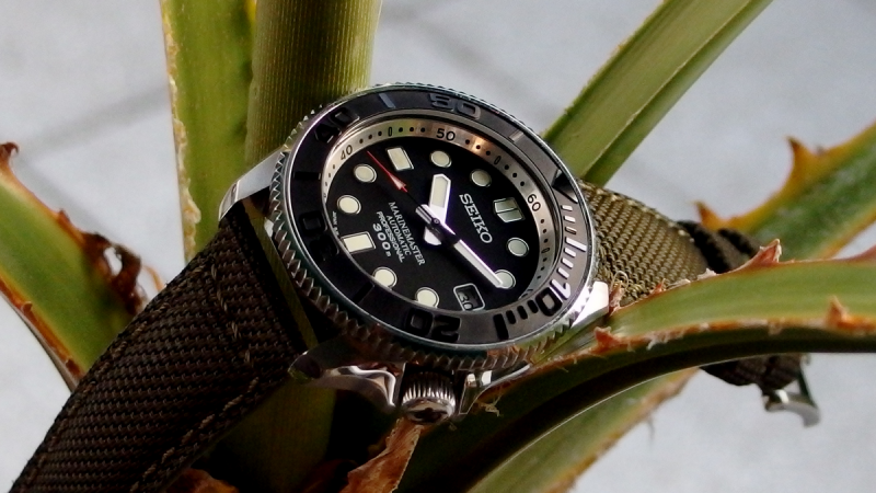 SKX MM CANVAS 001.png