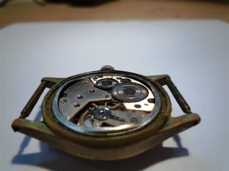 P1160910 (Medium).JPG