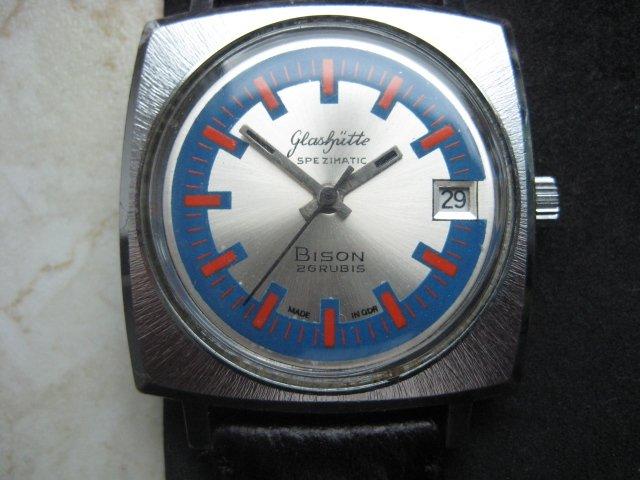 Bison Blaurot 001.JPG