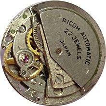 Ricoh_251_2.jpg