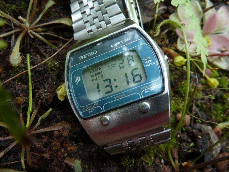 P1050807.JPG