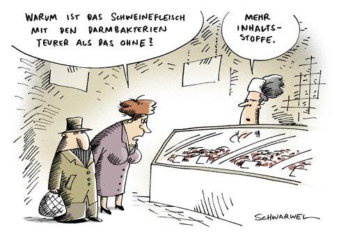 schweinefleisch_esbl_keim_seuche_1591835.jpg
