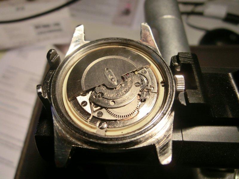 CIMG3696.JPG