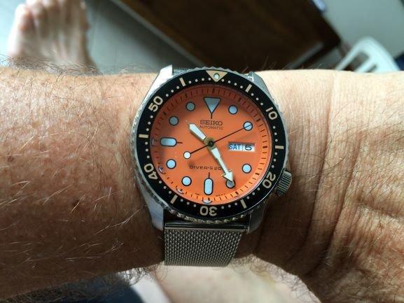 Diver 1997 0,25MB.JPG