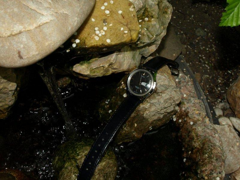 Timex DD 109 Fountain.jpg