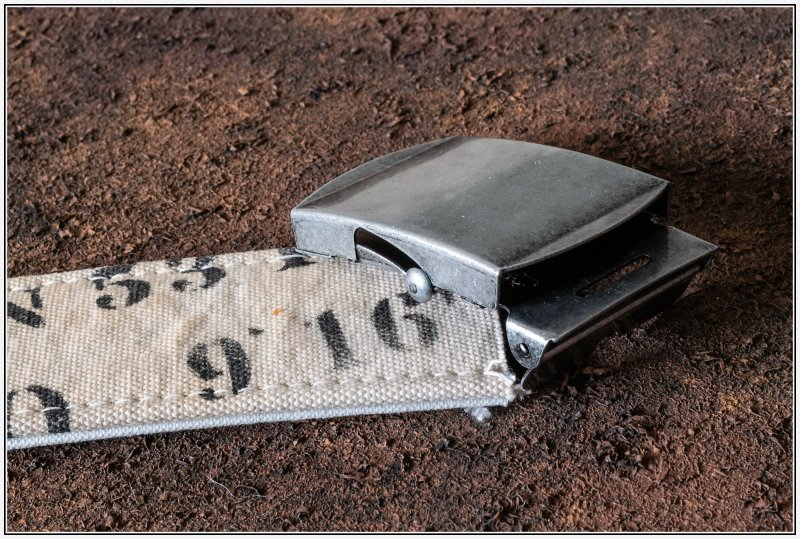 BaumwollgürtelP1000211.jpg