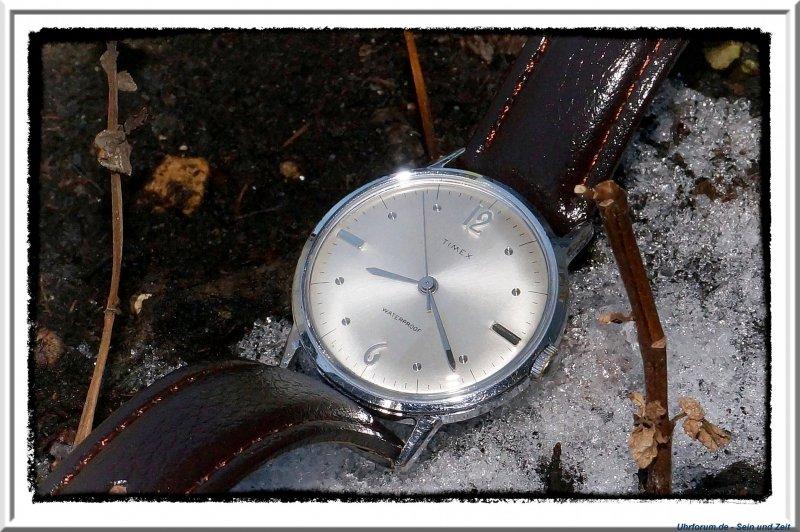 Timex Marlin 1967 (5).jpg