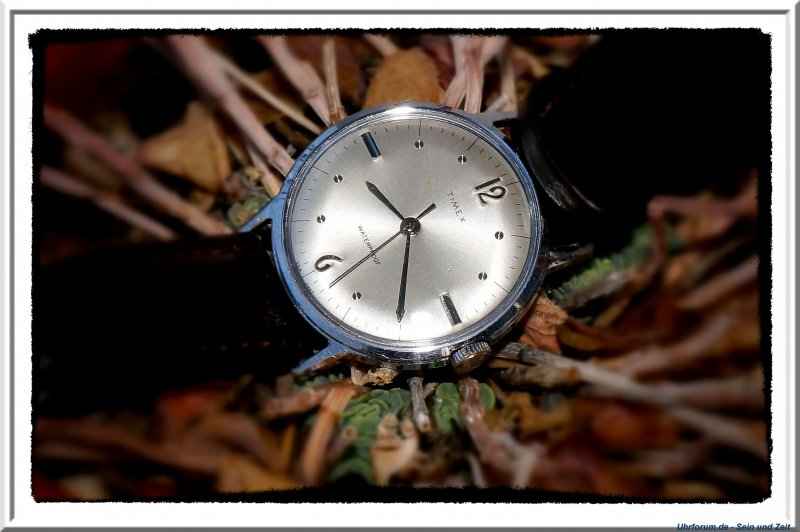 Timex Marlin 1967 (3).jpg