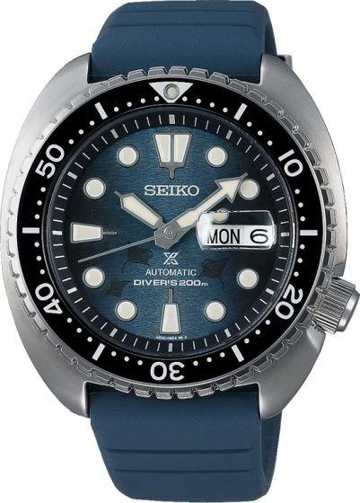 sto6-turtle.JPG