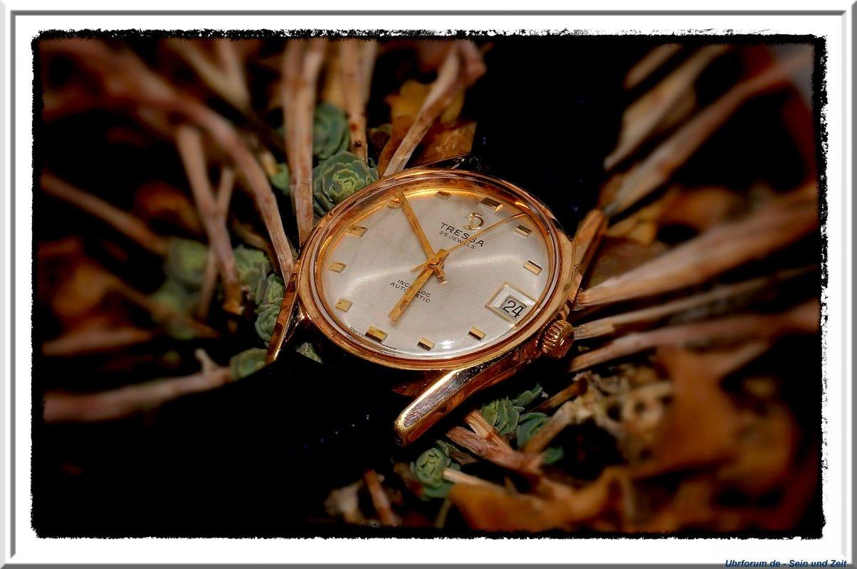Tressa Automatic, Kaliber Felsa 4462 (5).jpg