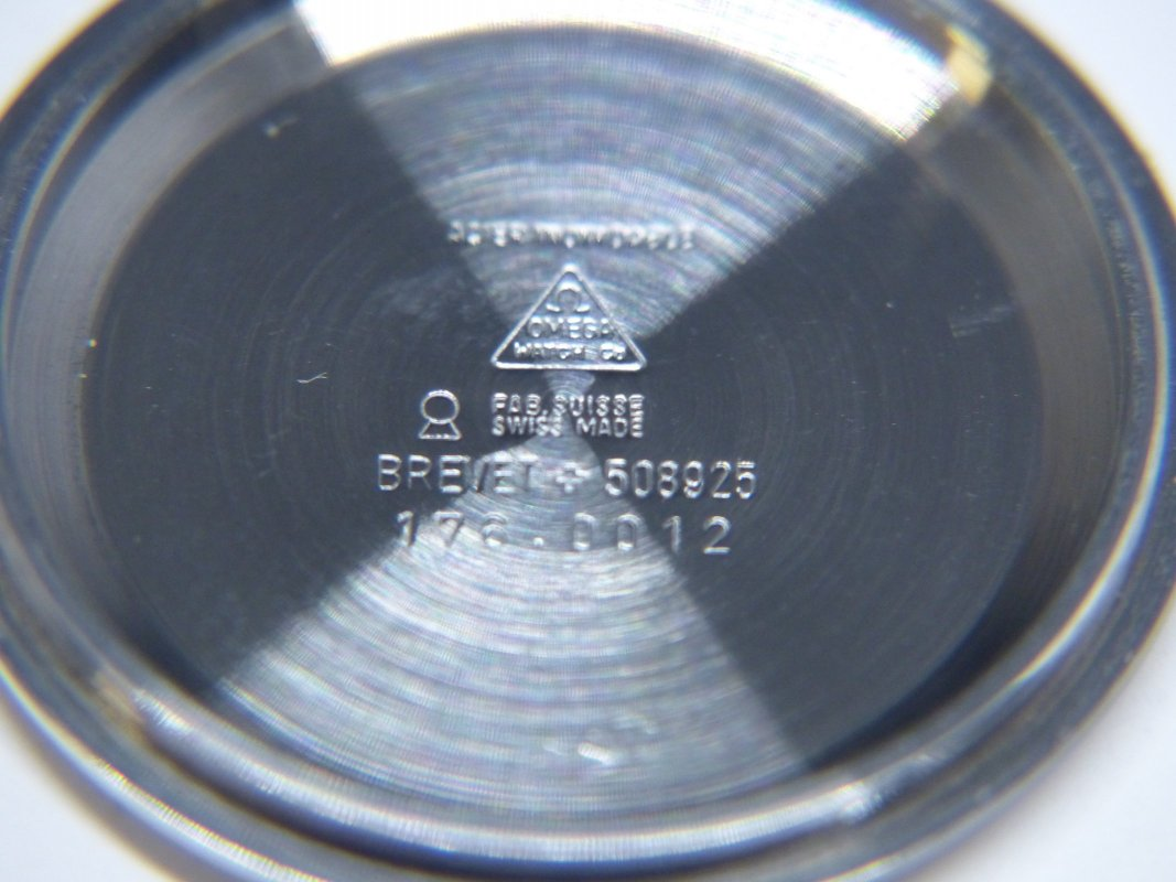 P1100129.JPG