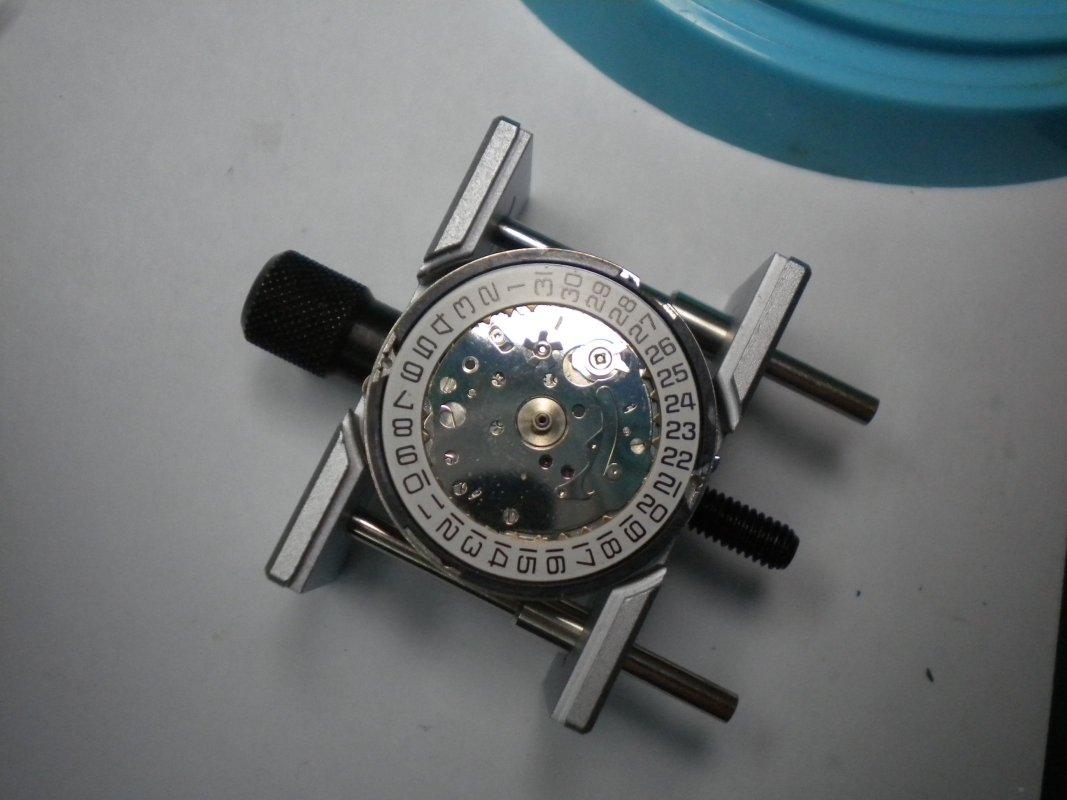 DSCN7656.JPG