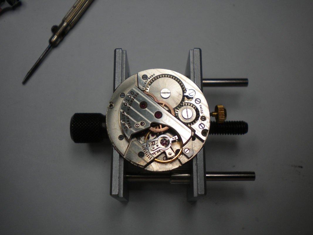 DSCN8013.JPG