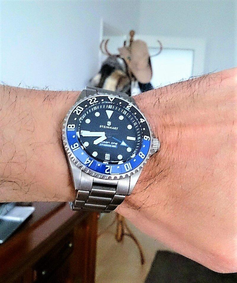 Steinhart Ocean One Titanium 500 GMT Premium 01.jpg