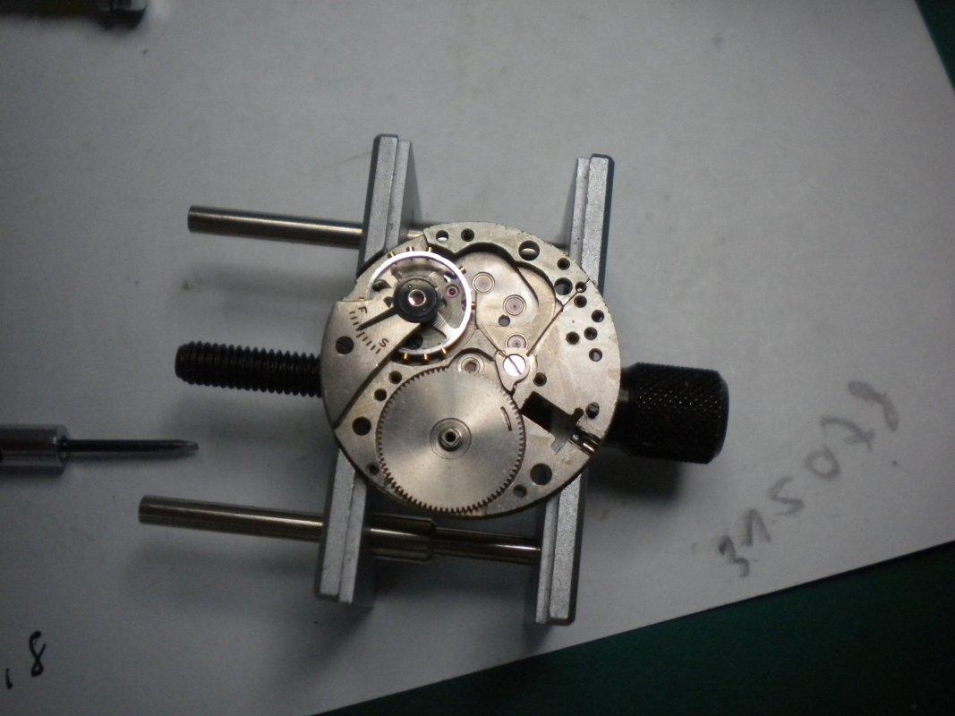 DSCN7981.JPG