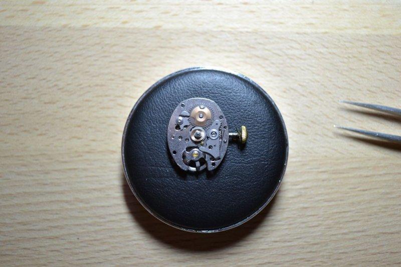k-DSC_0784.JPG