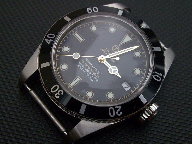 tiger-concept 037.jpg