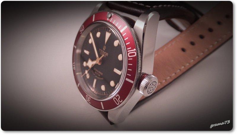 Tudor BB 008.jpg
