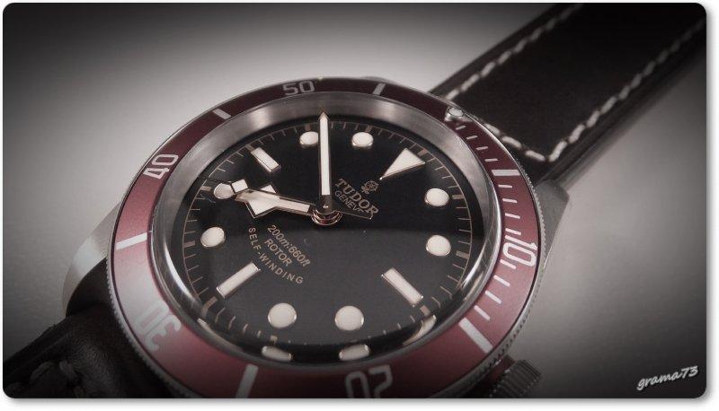 Tudor BB 007.jpg