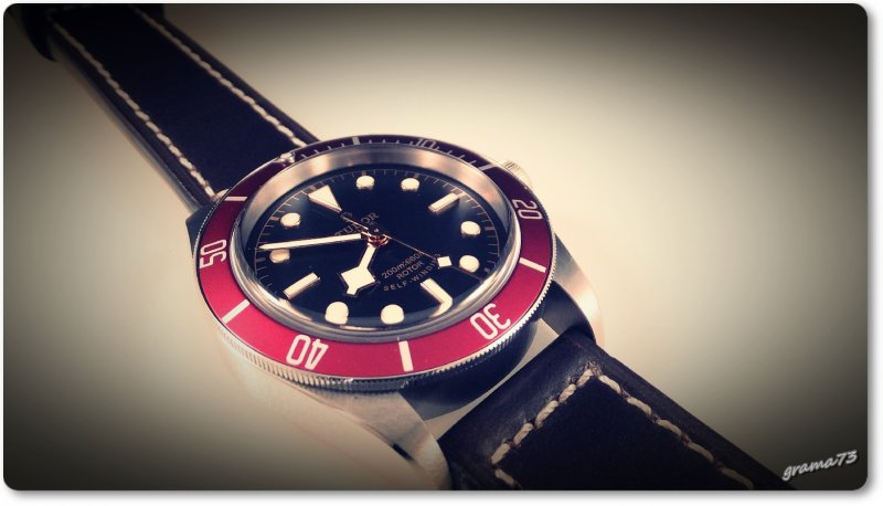Tudor BB 002.jpg