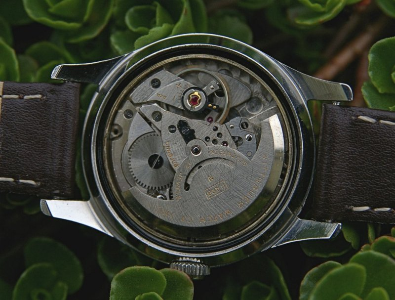 Wittnauer Automatic - Kaliber 1384 11ARG AS 1361.jpg