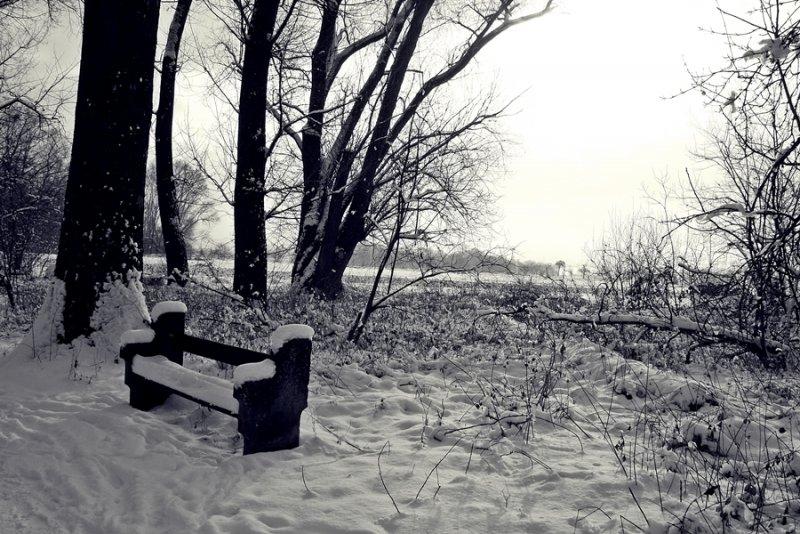 Schnee 2014 018ükl.JPG