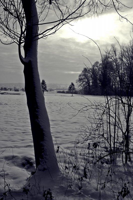 Schnee 2014 083ükl.JPG
