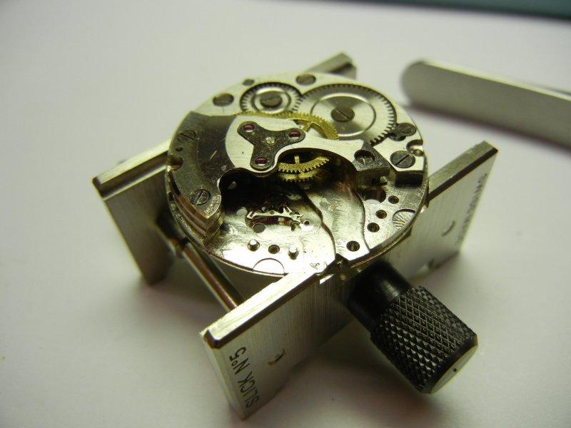 DSCN5275.jpg